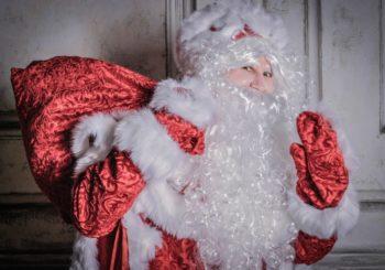 Цены на заказ Деда Мороза