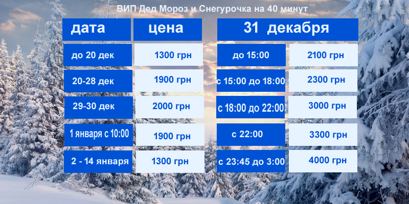 вип Дед Мороз и Снегурочка Киев